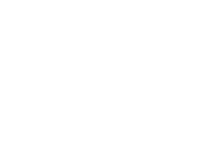rowlbertos-media-logo